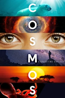 Cosmos A Spacetime Odyssey 2014 Season 01 All Episodes Hindi Dubbed HDRip 480p 720p mkv