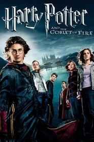 Harry Potter And The Goblet Of Fire 2005 Dual Audio Hindi-English x264 Esub BluRay 480p [508MB] | 720p [1GB] mkv